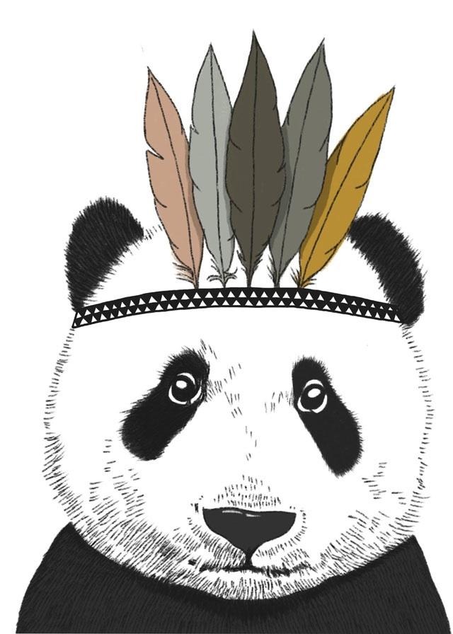 indian-panda_minimel