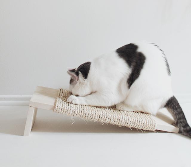 DIY: krappaal kat